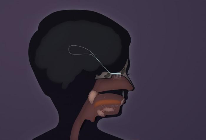 insidehead
